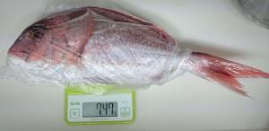 高知県大月町鮮魚3