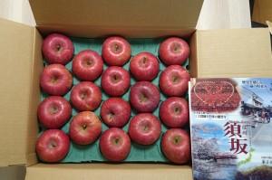 長野県須坂市りんご2