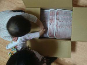 香川県三木町オリーブ豚1