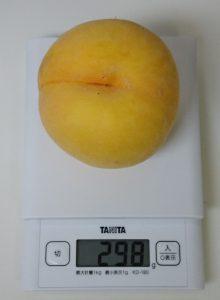 山形県天童市2016黄金桃2