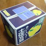 高知県宿毛市から『土佐文旦10kg』が届きました