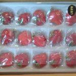 福岡県赤村から『農家直送 福岡県産 摘みたて完熟いちご 1kg(あまおう)』が届きました