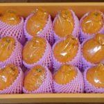 鹿児島県南さつま市から『薩摩の紅桜セット(不知火)』が届きました