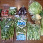 大阪府泉佐野市から『季節の泉州野菜セット(小)』『まぐろきりおとし1.2キロ』『厳選黒毛和牛クラシタロース切落し1kg(すきしゃぶ用)』が届きました