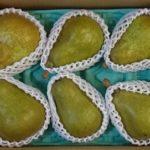 山形県上山市から『西洋梨(オーロラ)3kg ご家庭用』が届きました