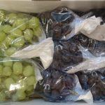 新潟県弥彦村から『葡萄農家おまかせお楽しみセット』が届きました